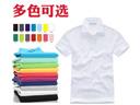 HR-100广告衫 T恤衫 POLO衫